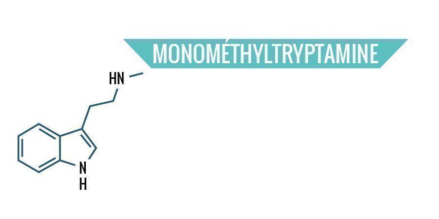 Monométhyltryptamine