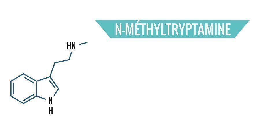 N-Méthyltryptamine