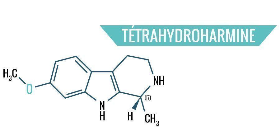 Tétrahydroharmine