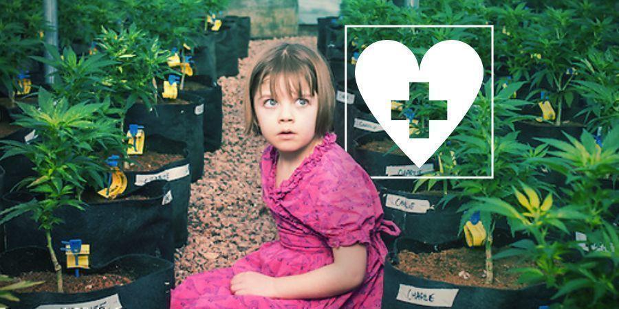 Le CBD et l'épilepsie : l'histoire de Charlotte