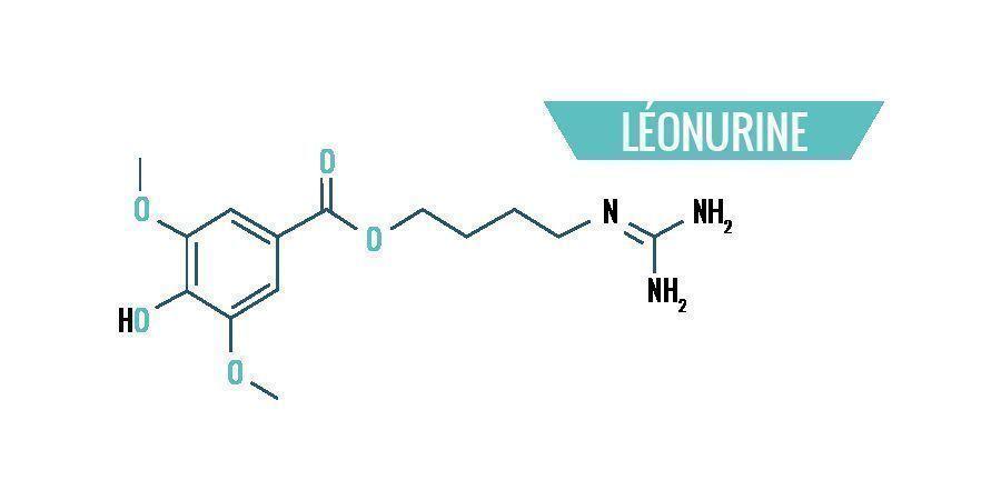 Chimie de Leonotis Leonurus