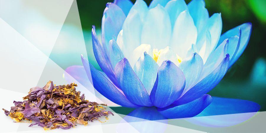 Lotus Bleu - Herbes À Vaporiser Pour La Bonne Humeur