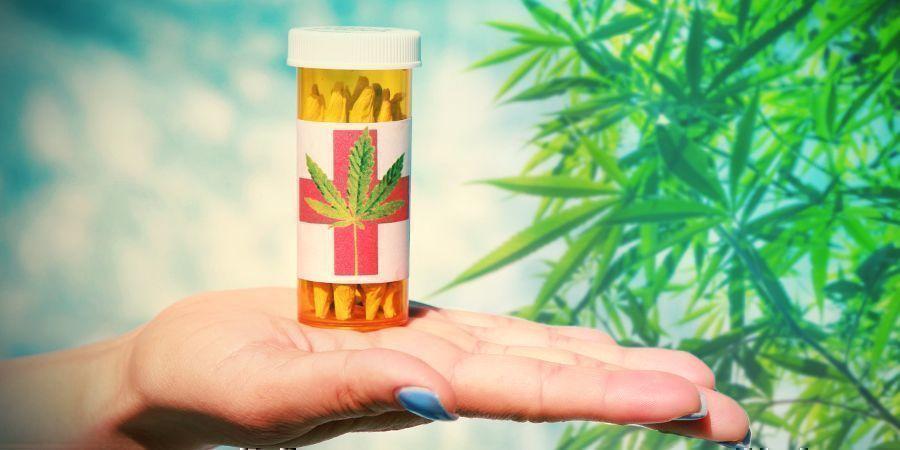 Cannabis Collectifs : Des Organisations À But Non-lucratif