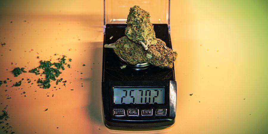 Le Système De Pesage Unique De La Culture Du Cannabis