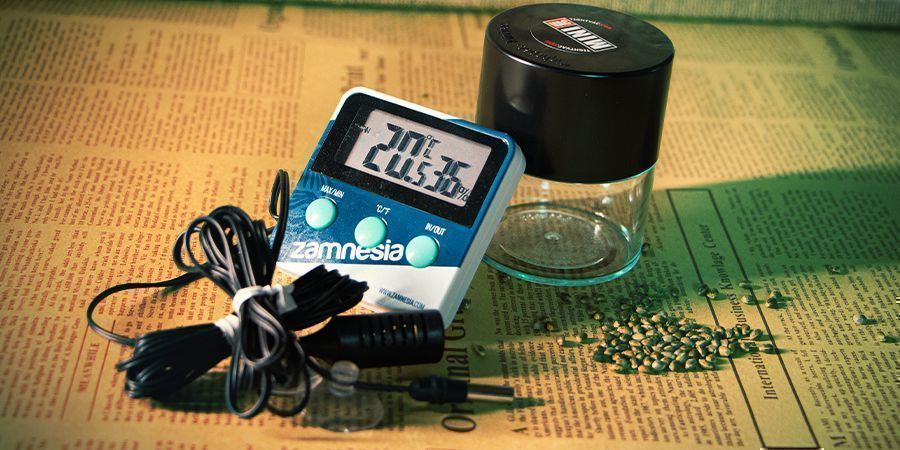 Facteurs À Prendre En Compte Lors Du Stockage Des Graines De Cannabis