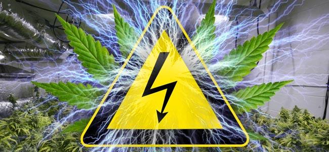 Électricité Et Culture De Cannabis