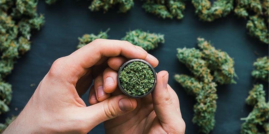Et Le Cannabis ? Tombe-T-Il Dans La Catégorie Psychédélique ?