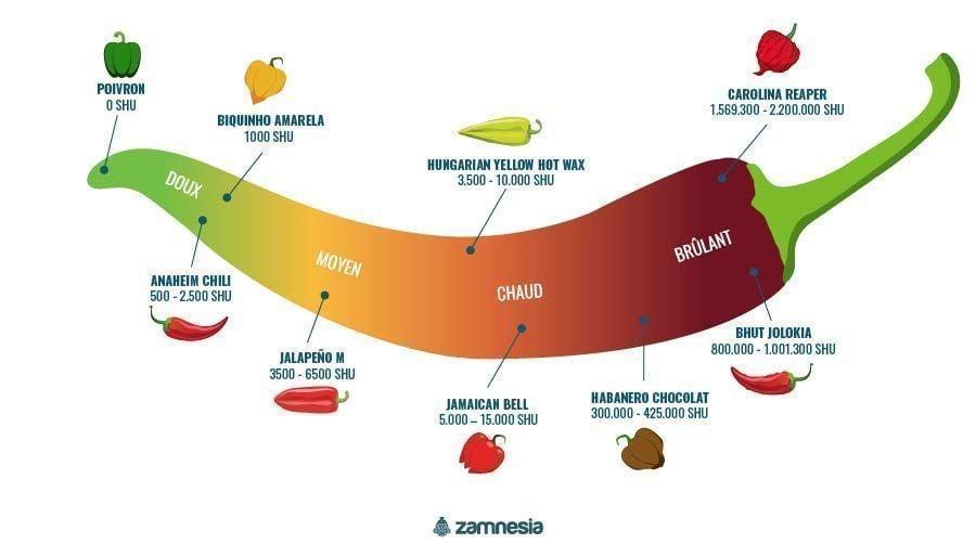 Piments Infographie