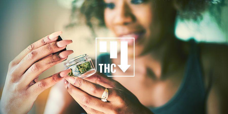 Les Effets De Cannabis Ruderalis