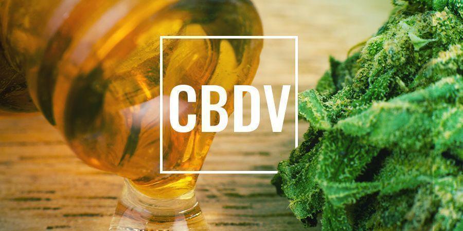 Qu'Est-Ce Que la CBDV Et Que Fait-Elle ?