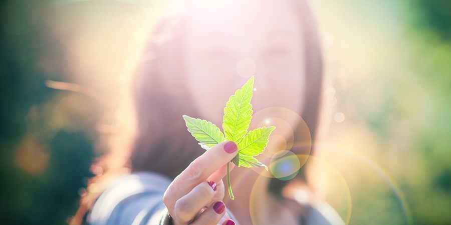 Passionnés du Cannabis