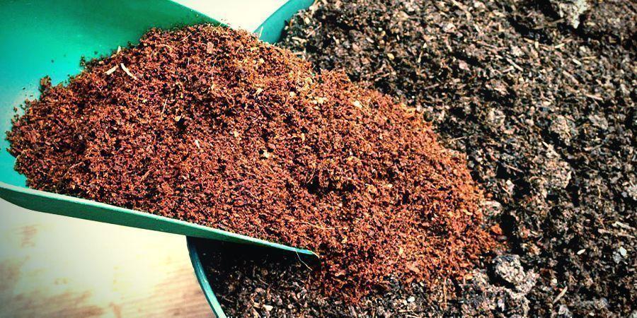 Comment Utiliser La Fibre De Coco Comme Substrat ?