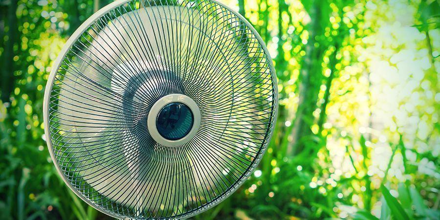 Ventilateurs Bon Marché Peuvent Rendre L'Âme Après Seulement 2 Ou 3 Récoltes (#11)