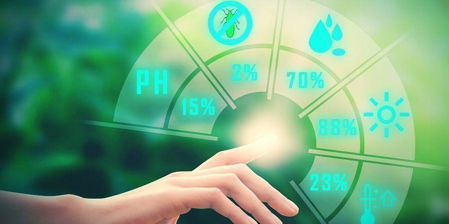 Cannabis, Magnésium Et Niveaux De pH