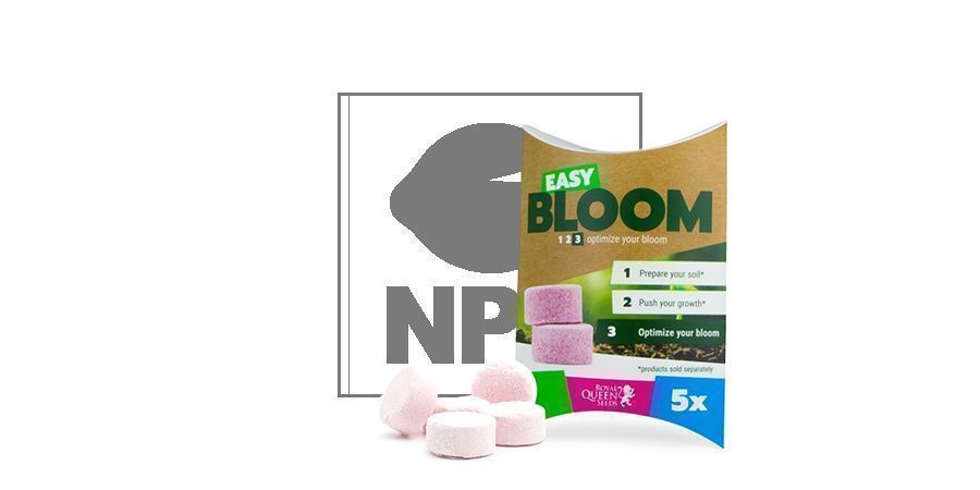 Easy Bloom Booster De Floraison