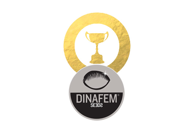 Récompenses de Dinafem