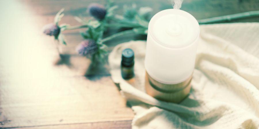 Les Terpènes Et L'Aromathérapie