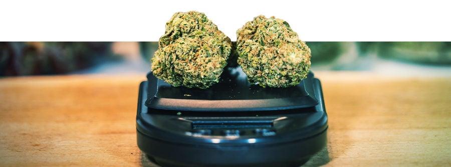 Balances Pour Cannabis