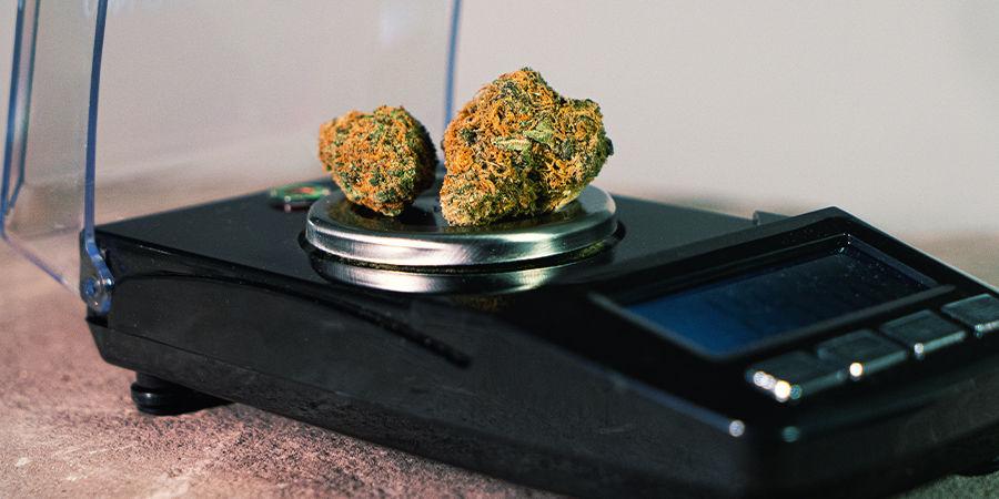 Spécificités Importantes D'Une Balance À Cannabis