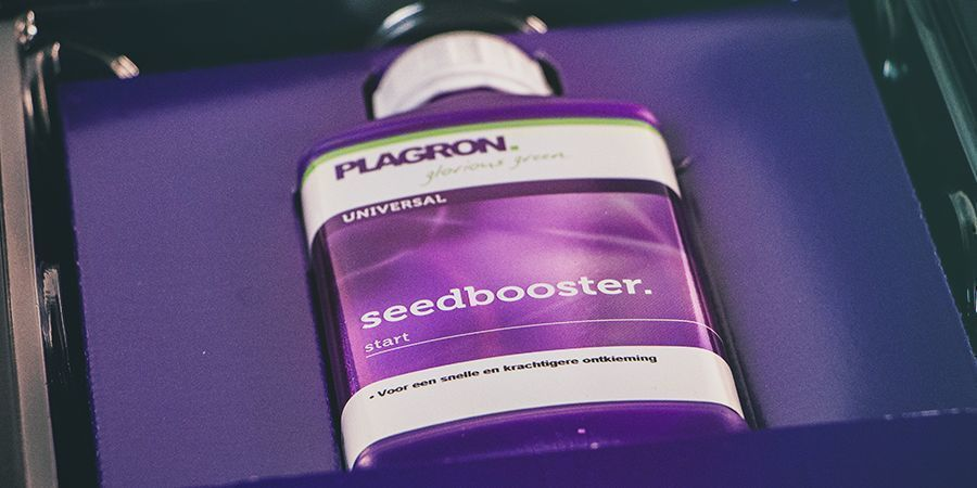 Plagron Seedbooster Plus - CANNABIS