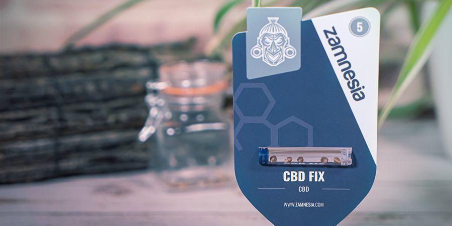 Que Sont Les Graines De Cannabis Riche en CBD