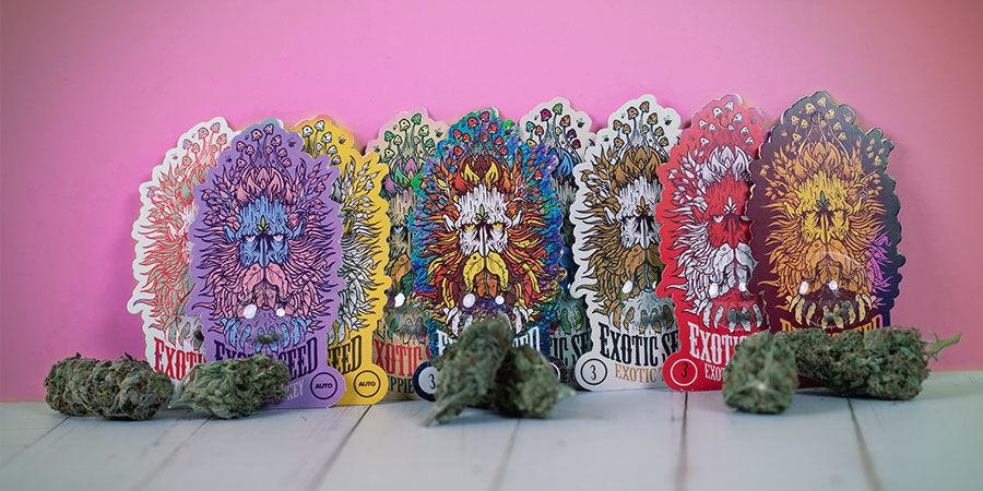 Variétés Récompensées Exotic Seed