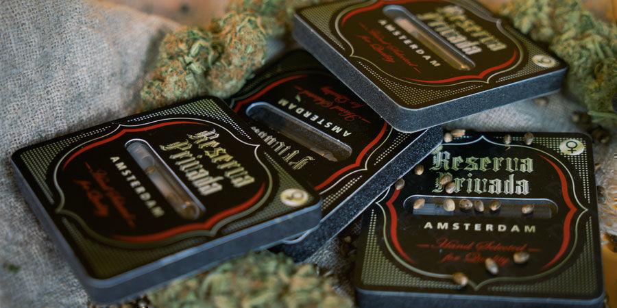 3 Meilleures Variétés Cannabis Reserva Privada