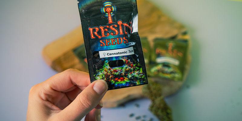 Resin Seeds: Fondateurs Mouvement CBD