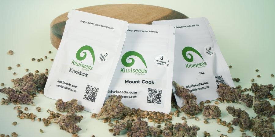 Quel Est Le Top 3 Des Variétés De Cannabis Par Kiwi Seeds ?
