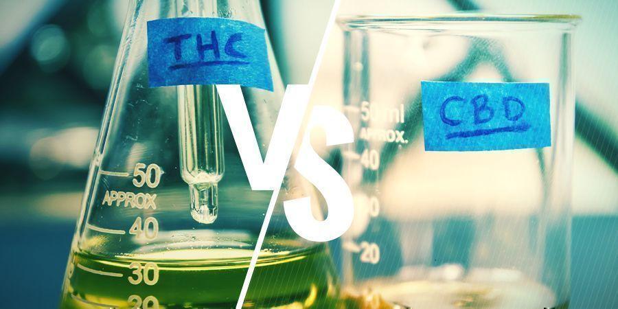 QUELLE EST LA DIFFÉRENCE ENTRE LE THC ET LE CBD ?