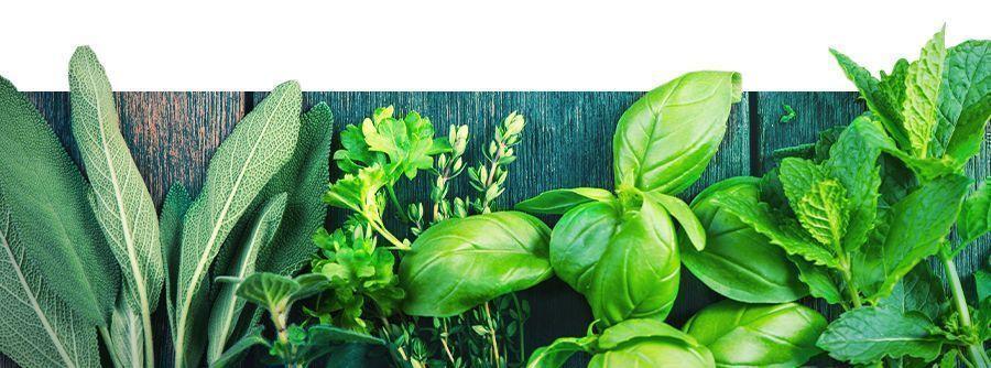 Informations Sur Les Herbes À Vaporiser
