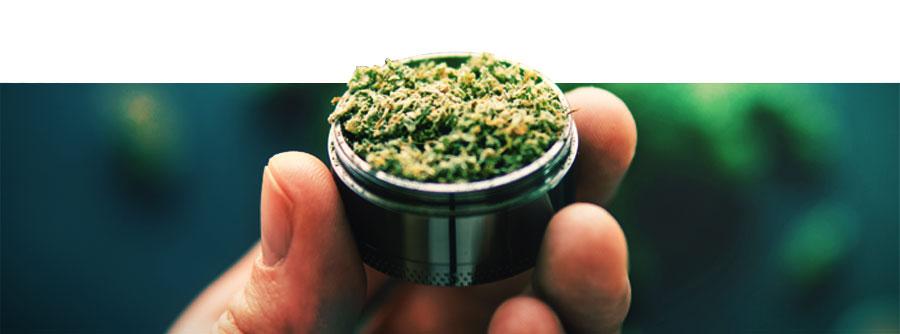 Grinder À Cannabis