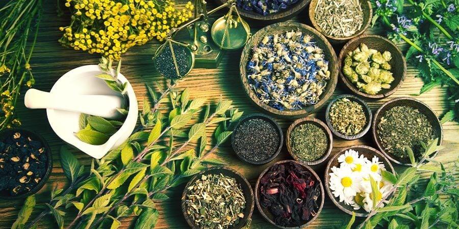 Augmenter son énergie naturelle avec des plantes