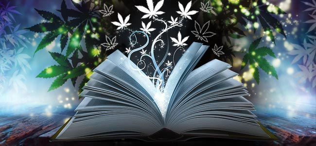 Guide De Culture Du Cannabis
