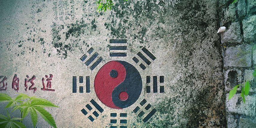 Yin, Yang & Cannabis