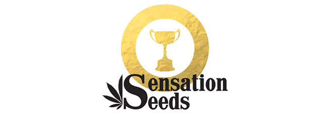 Récompenses Sensation Seeds