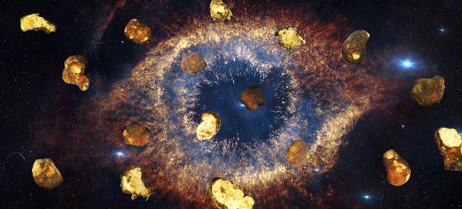 Univers de la truffe magique