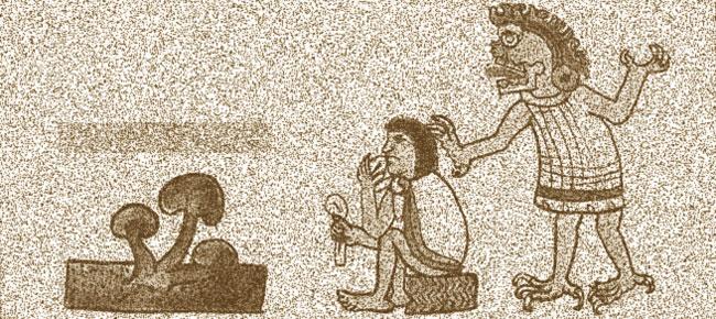 Aztèque mangeant des champignons magiques