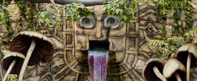 Maya champignons magique