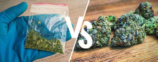 Cannabinoïdes Naturels Vs Synthétiques : Quelle Est La Différence ?