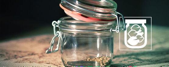 Quelle Est La Meilleure Manière De Conserver Des Graines De Cannabis ?