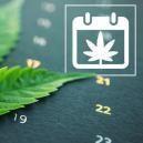 Calendrier Zamnesia De Culture Du Cannabis En Extérieur