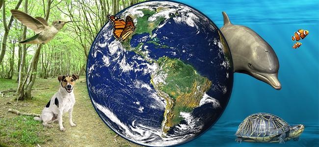 Biodiversité cannabis