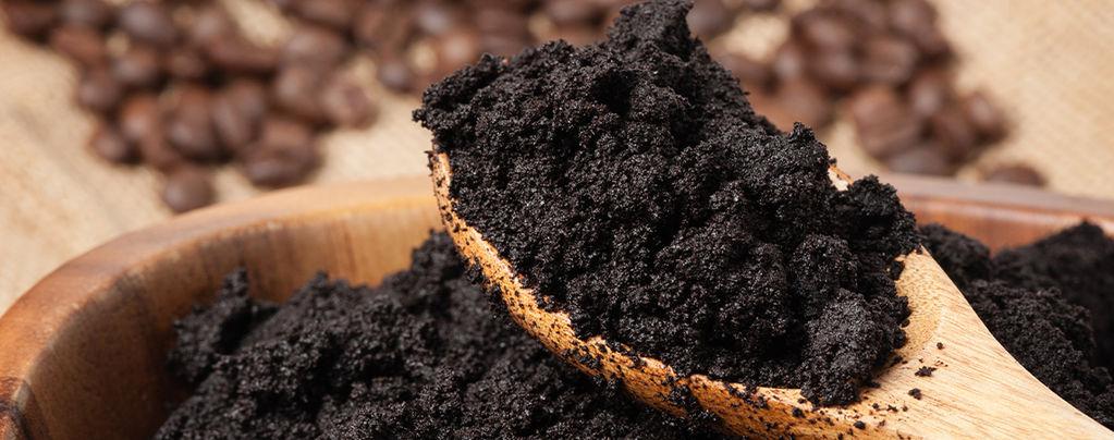Recyclez le marc de café et rendez vos plantes heureuses
