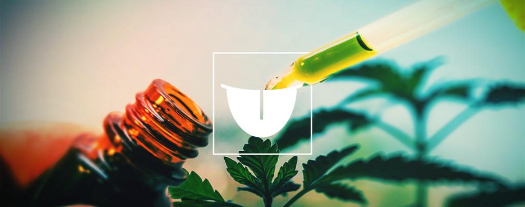 Teinture De Cannabis En Sublingual