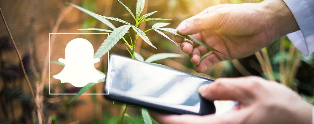Cannabis Snapchat