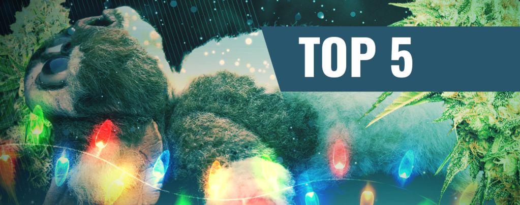 Top 5 Des Films de Noël Pour Fumeurs de Joints 2016