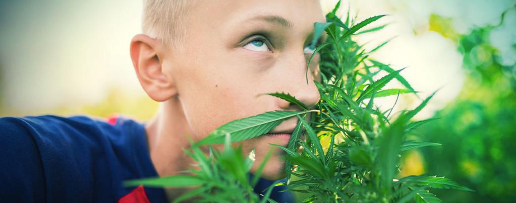 Raide Sans Cannabis
