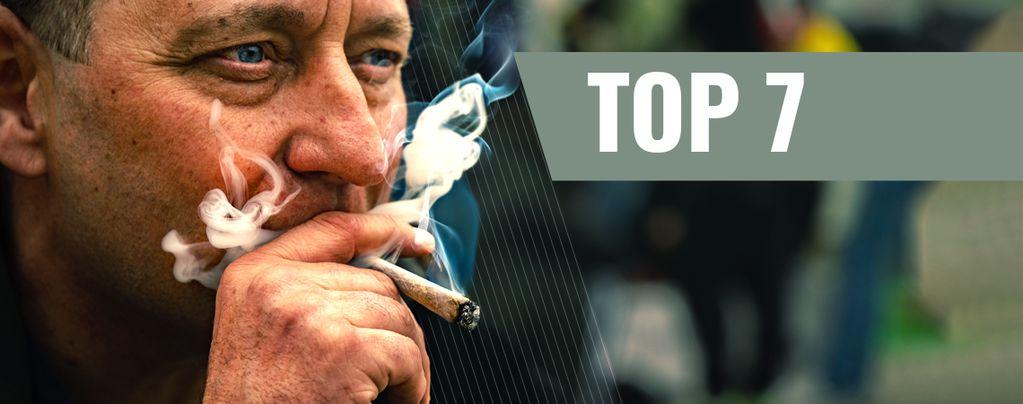 Variétés de Cannabis Motivation et Productivité