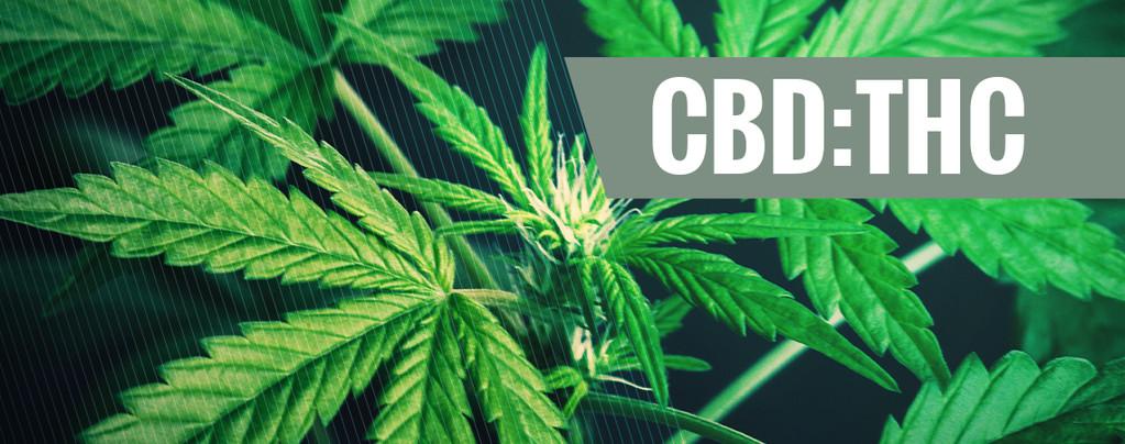 Ratio de CBD THC